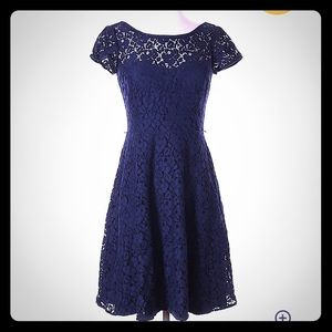 WHBM Fit & Flare Navy Lace Cocktail Dress